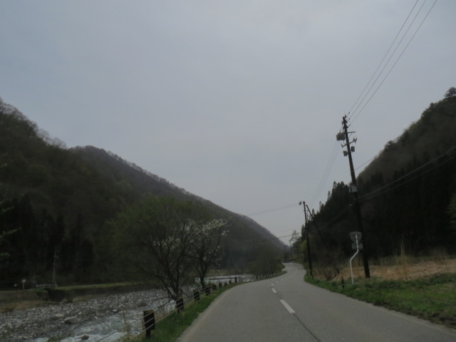 IMG_4173-r.jpg
