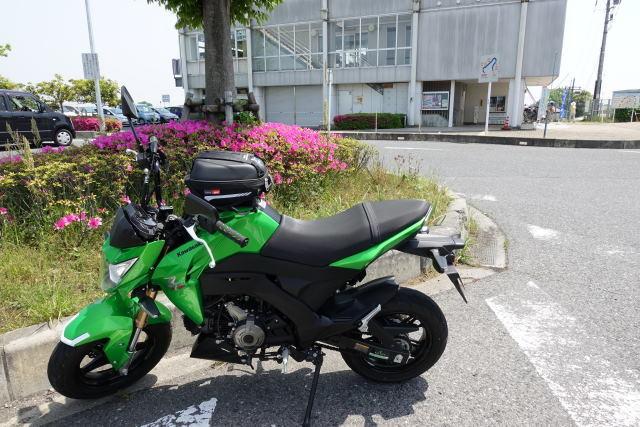 DSC00631_s.jpg